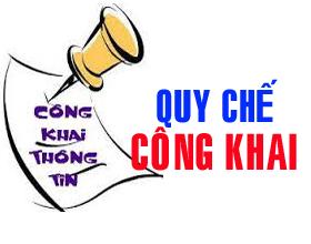 Thong tu ban hanh Quy che thuc hien cong khai doi voi co so giao duc cua he thong giao duc quoc dan