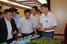 Truong Dai hoc Hung Vuong to chuc Hoi thao khoa hoc: Ky thuat canh tac cay Dia hoang theo huong dan GACP – WHO
